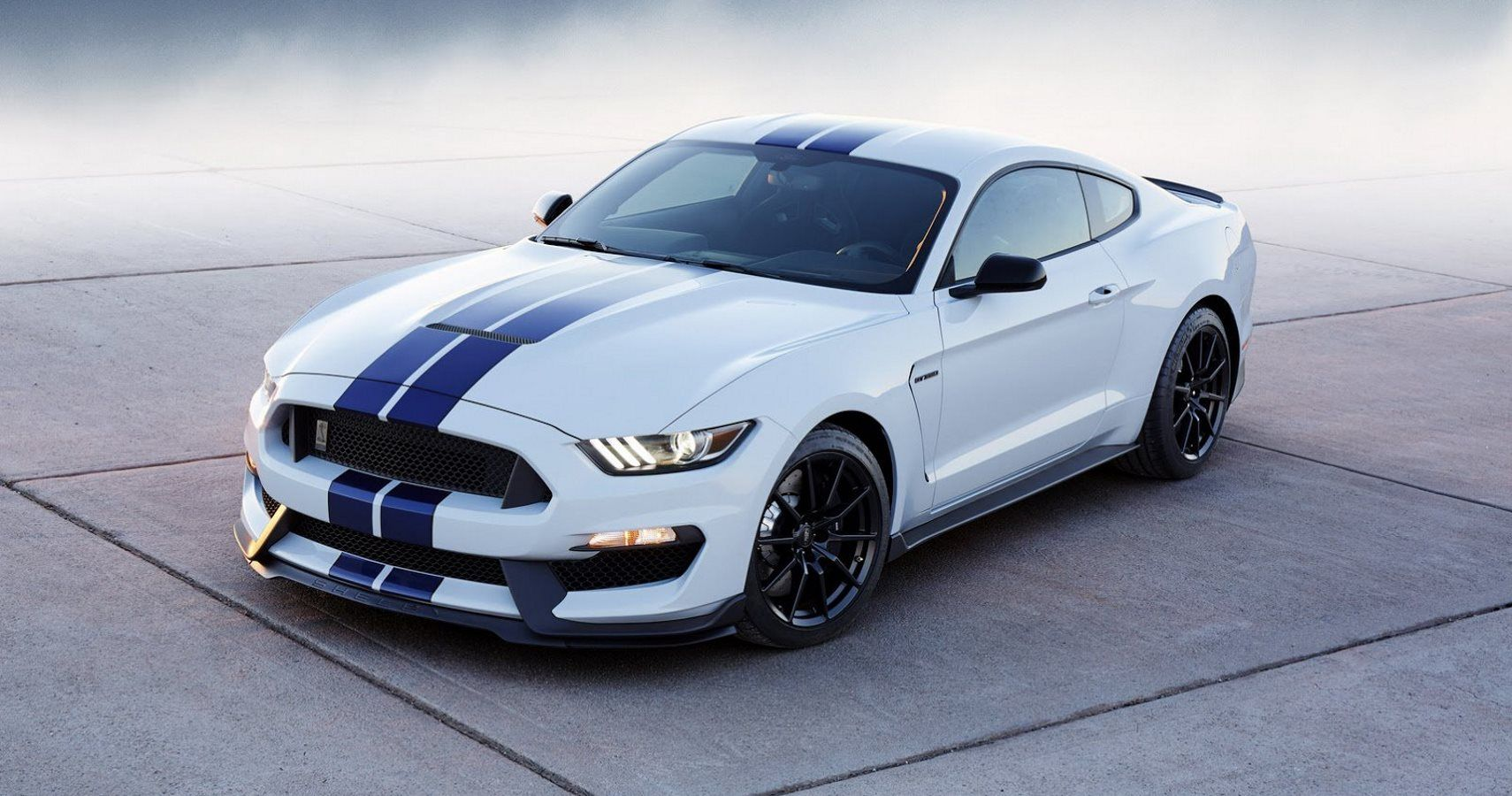 2019 ford mustang shelby gt500 gets roll cage hotcars
